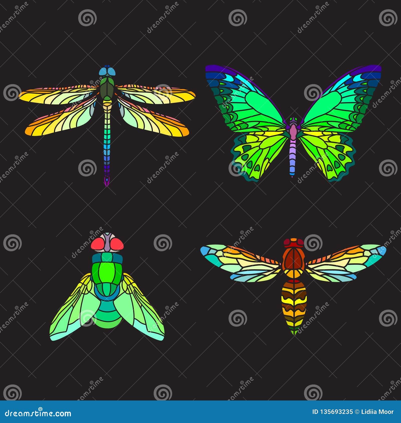 Fije de insectos olorful del cristal de colores del  de Ñ