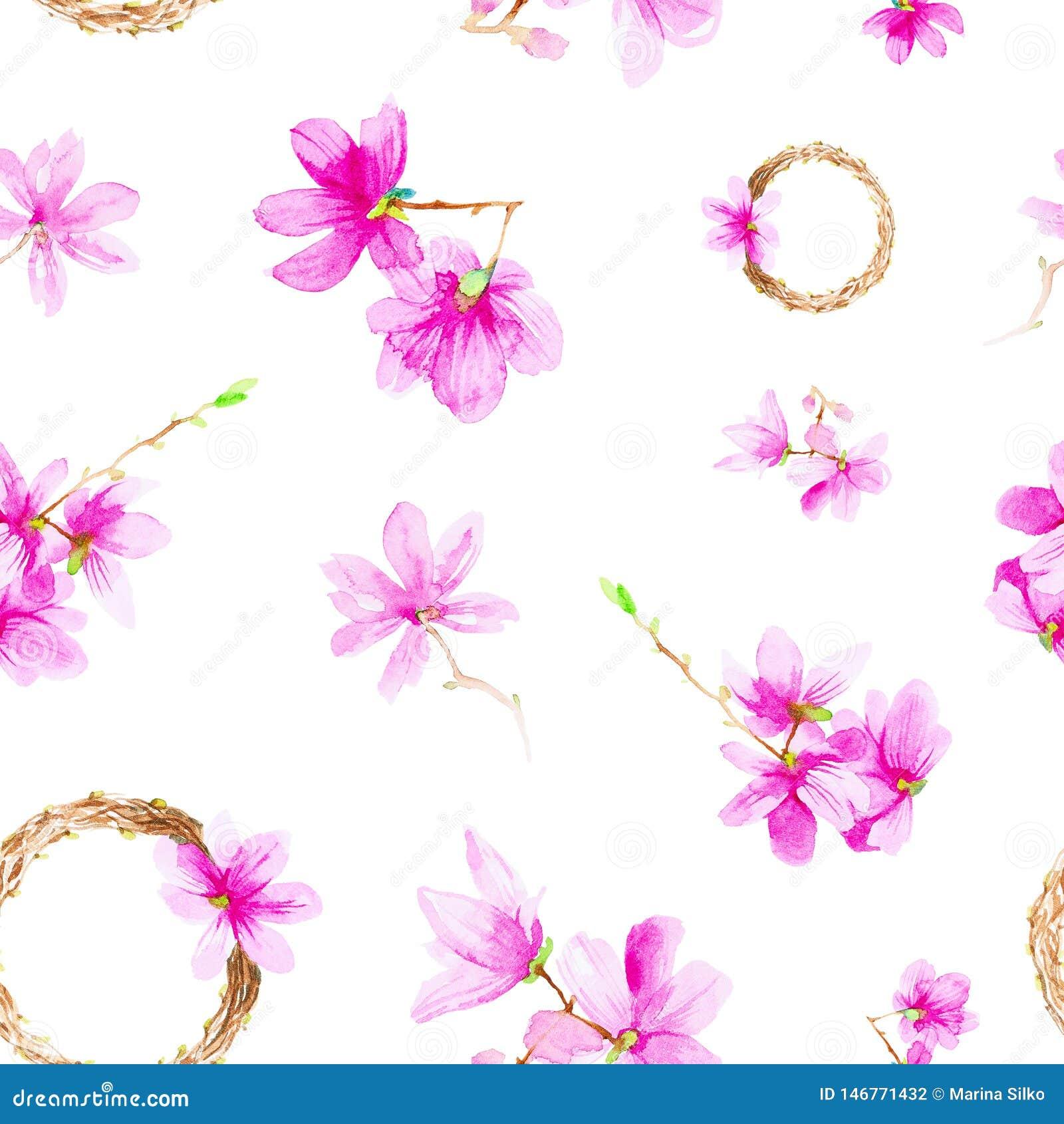 Fije de las flores, de las ramitas y de la guirnalda del ciruelo Ejemplo de la acuarela aislado en el fondo blanco Modelo incons?