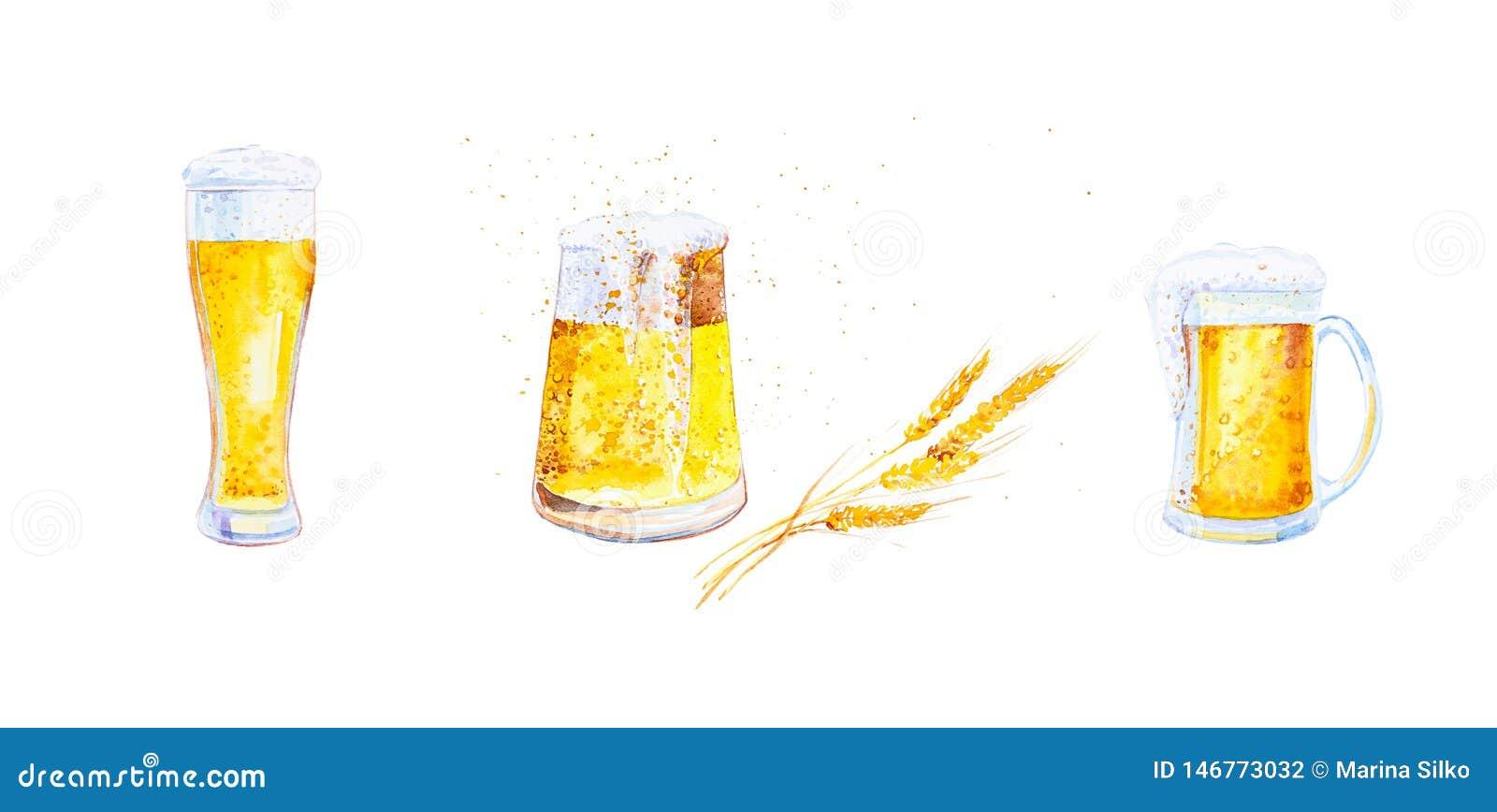 Fije de las tazas llenadas de la cerveza con espuma y de los oídos del trigo con las migas Ejemplo de la acuarela aislado en el f
