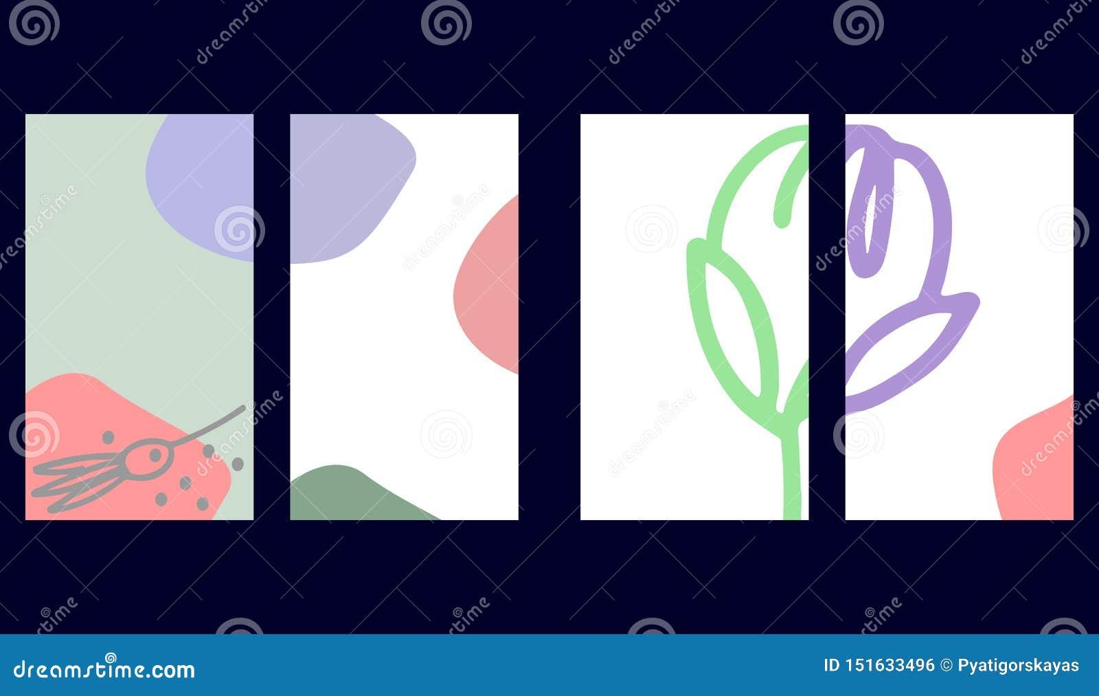 Fije de plantillas sociales de las historias de los medios Fondos florales en colores en colores pastel