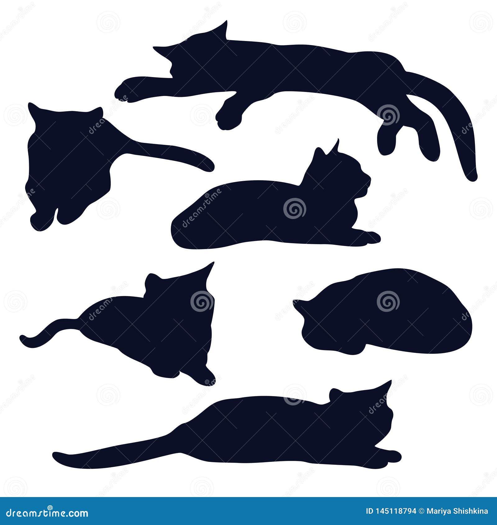 Fije de siluetas de mentira de los gatos negros en diversas actitudes