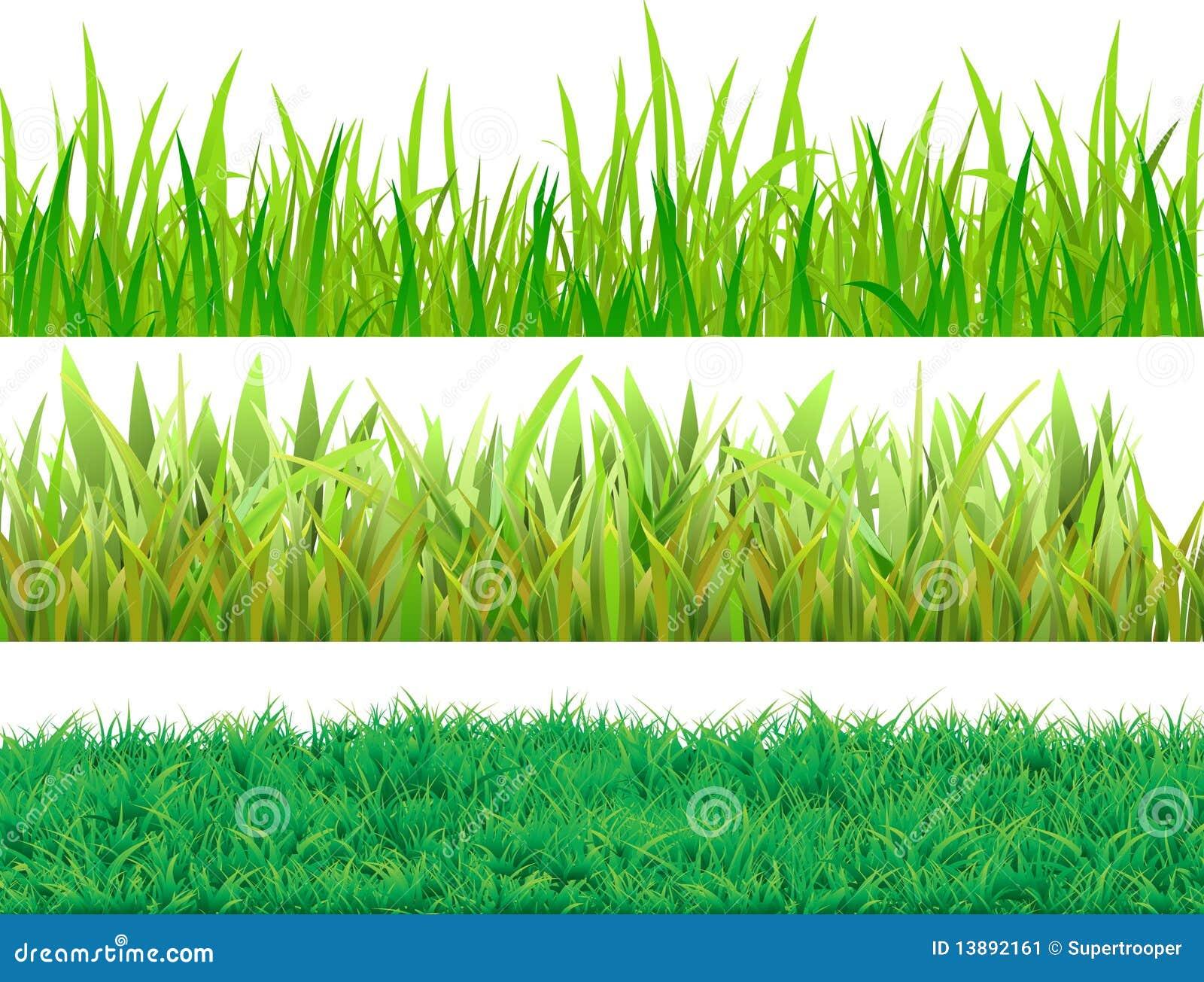 Fije la hierba