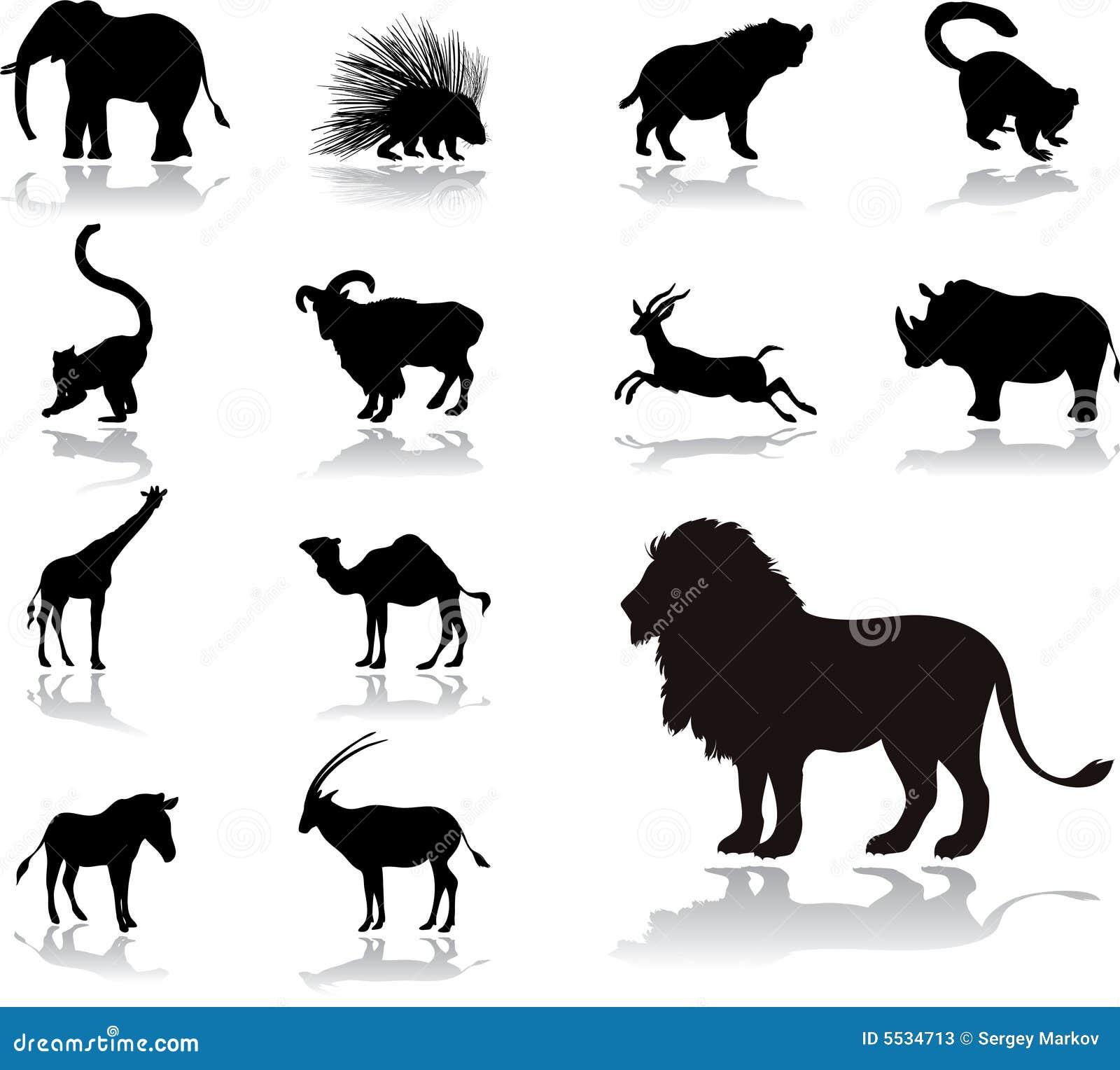 Fije los iconos - 25. Animales