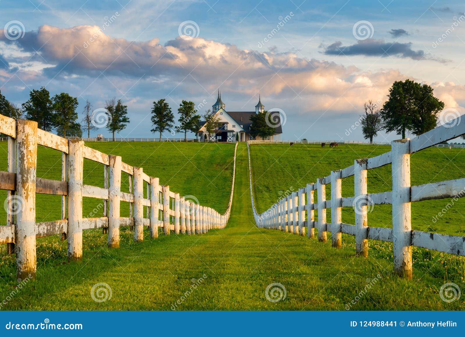 low cost 14950 ae9a5 Fila blanca y granero, backroads de la cerca de Kentucky