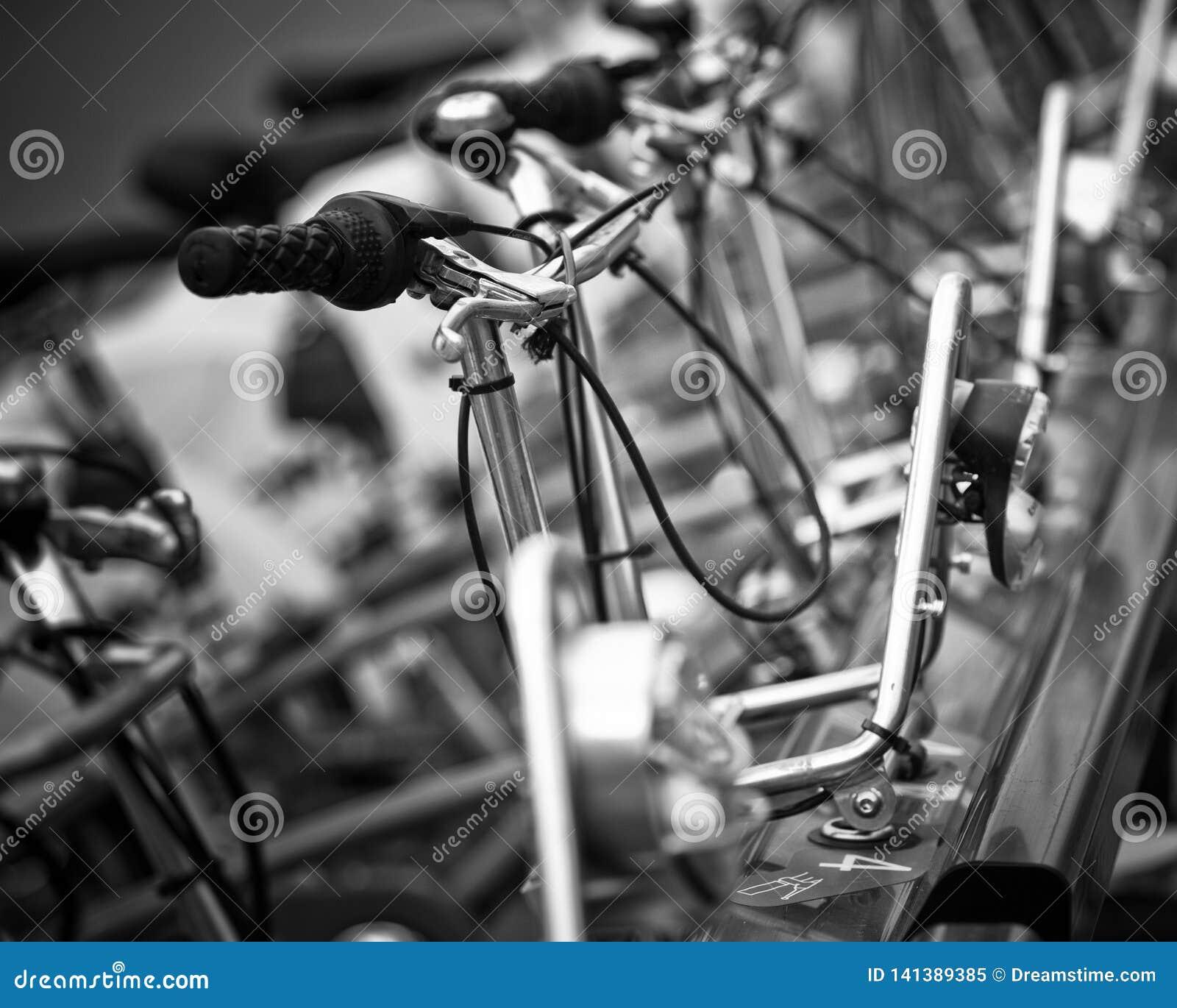Fileira das bicicletas, Barcelona