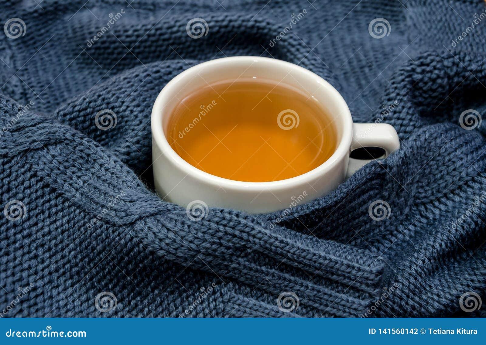 Filiżanka zawijająca w herbata ciepłym, błękitnym pulowerze,