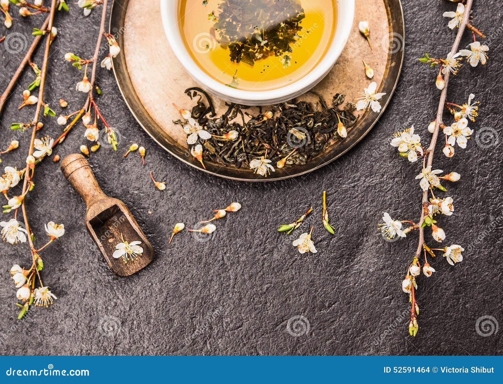 Filiżanka zielona herbata z sprig czereśniowi okwitnięcia na zmroku kamienia tle