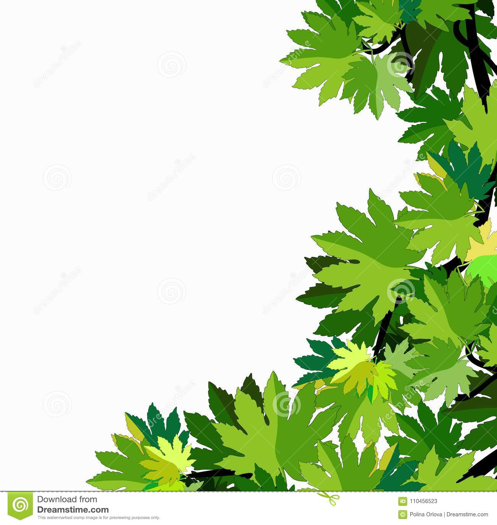 Filial av sidor för lönnträd också vektor för coreldrawillustration