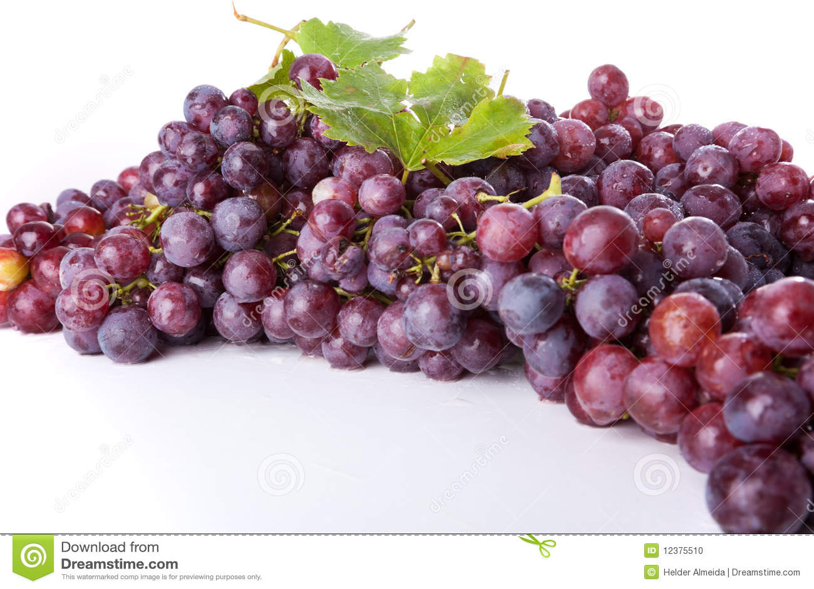 Filial das uvas