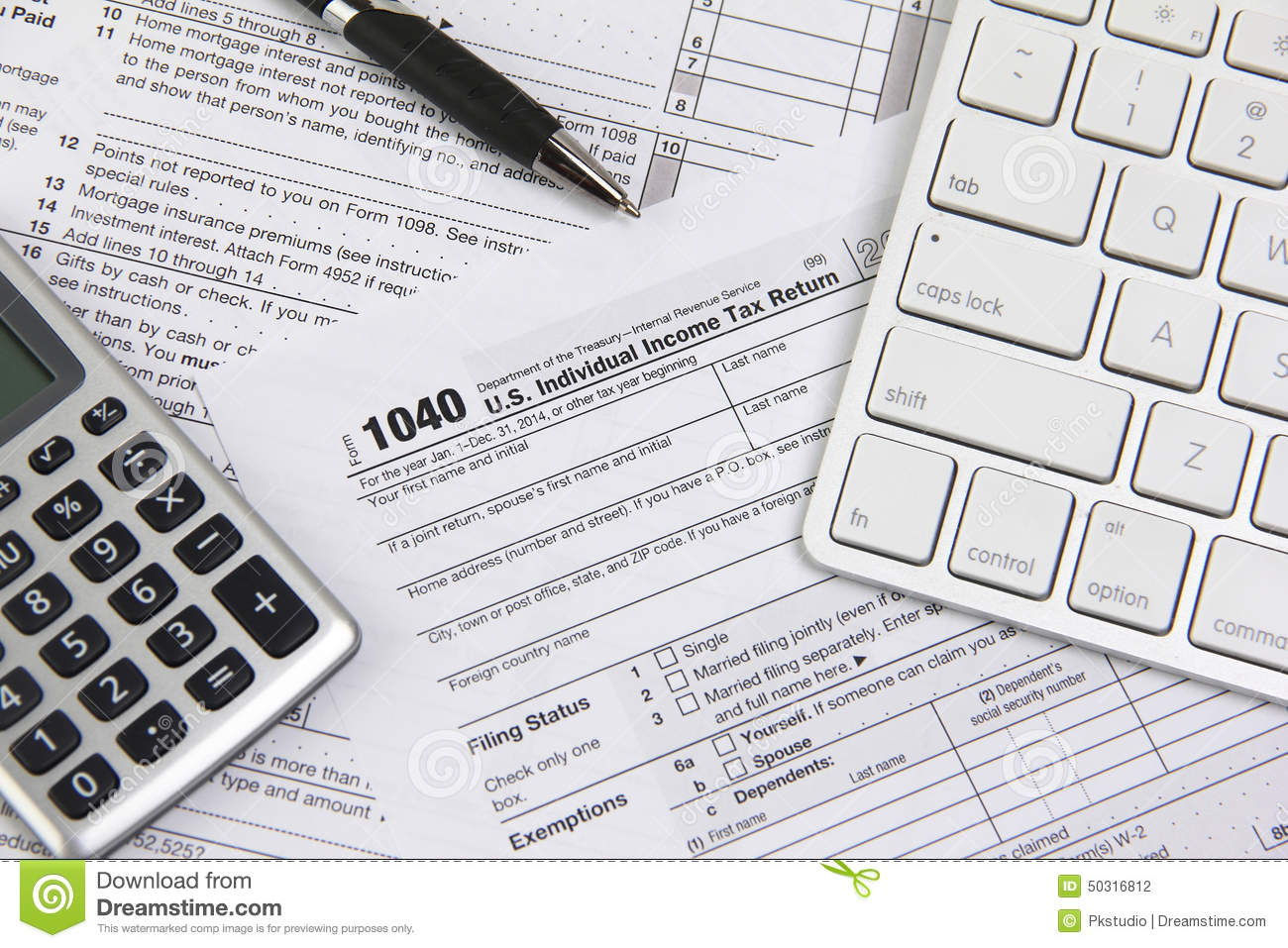acceptance of electronic tax filing system essay One of the most successful e-government initiatives, the electronic filing system (efiling), allows tax returns to be filed electronically despite many taxpayers adopting this method, a large number are still using the traditional manual method of filing tax returns.
