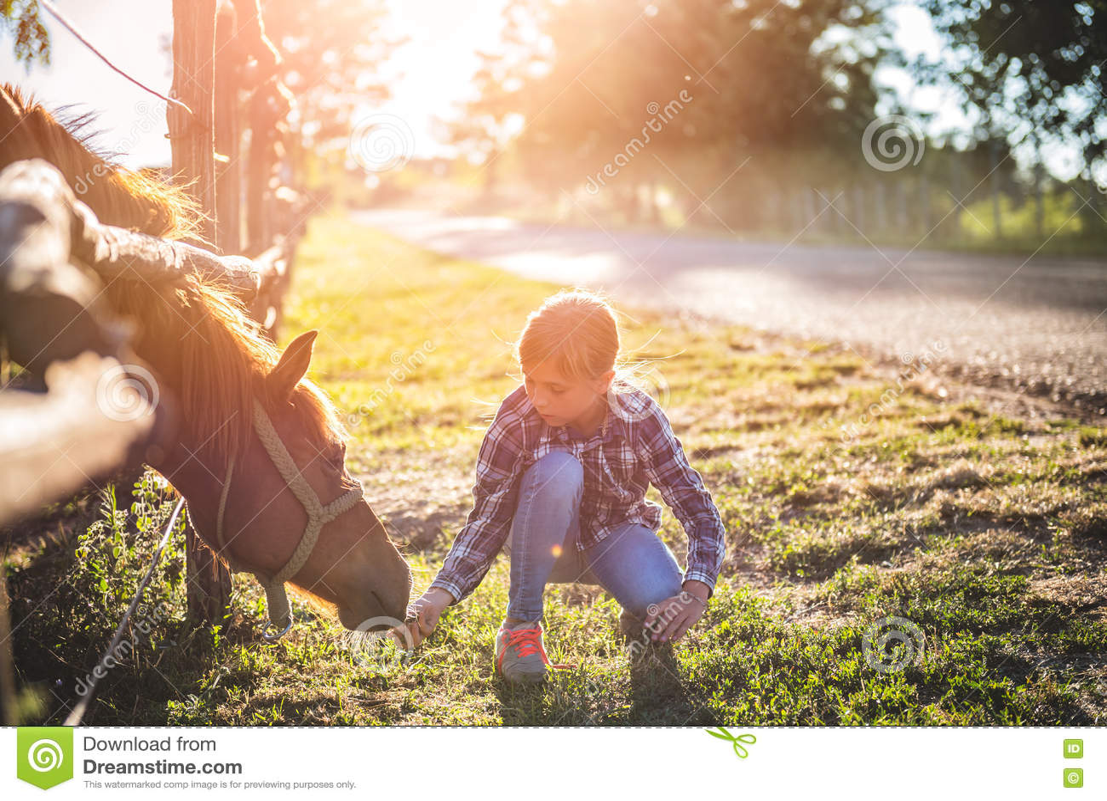 Fille alimentant le cheval de Brown