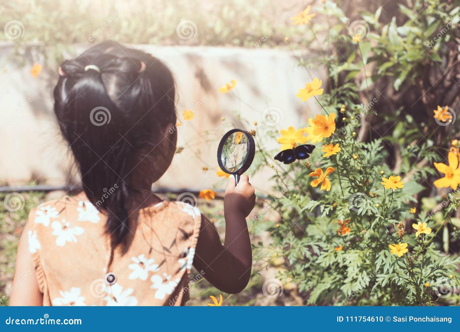Fille asiatique de petit enfant employant le papillon de observation de loupe