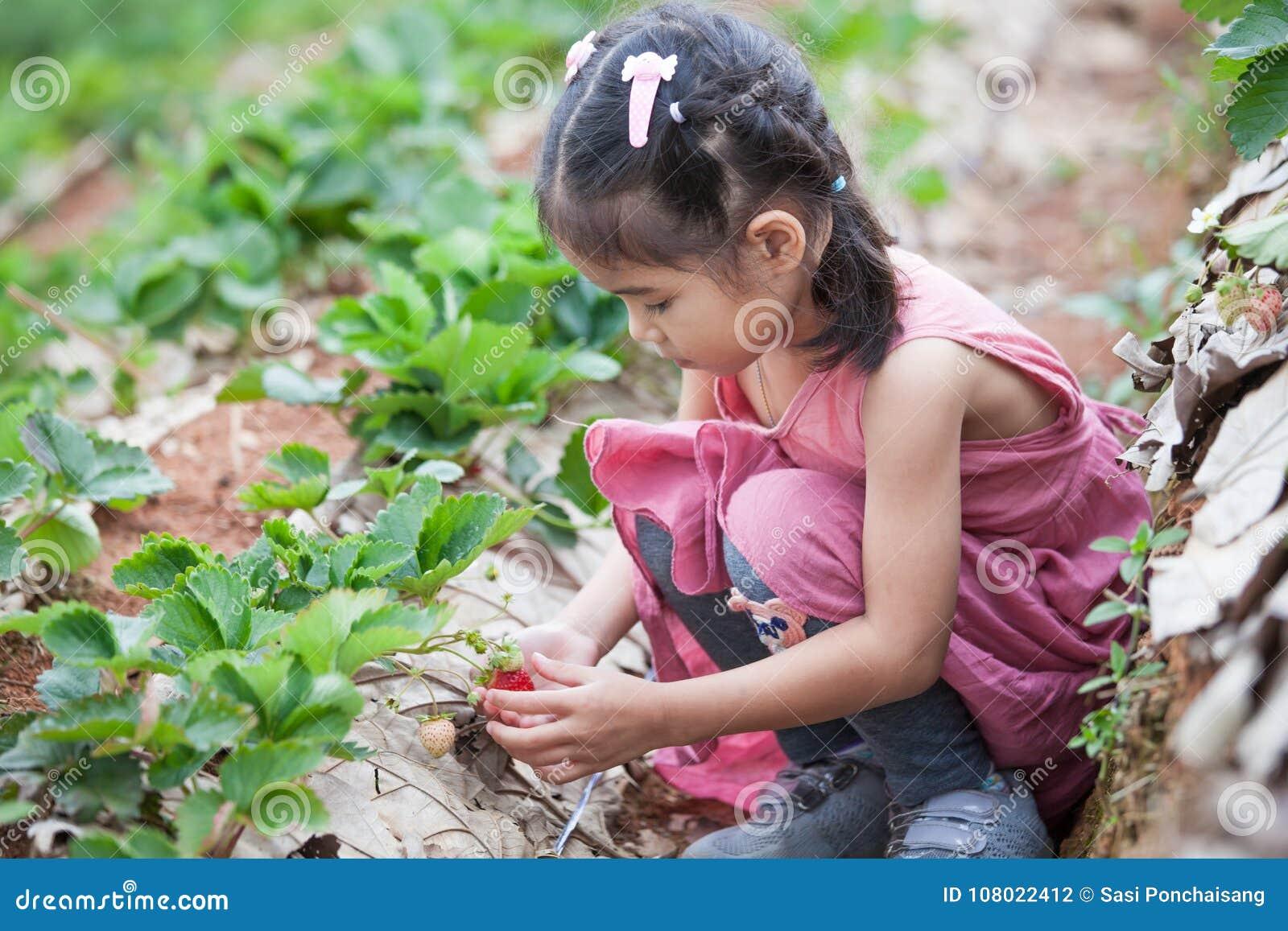 Fille asiatique mignonne de petit enfant sélectionnant les fraises fraîches