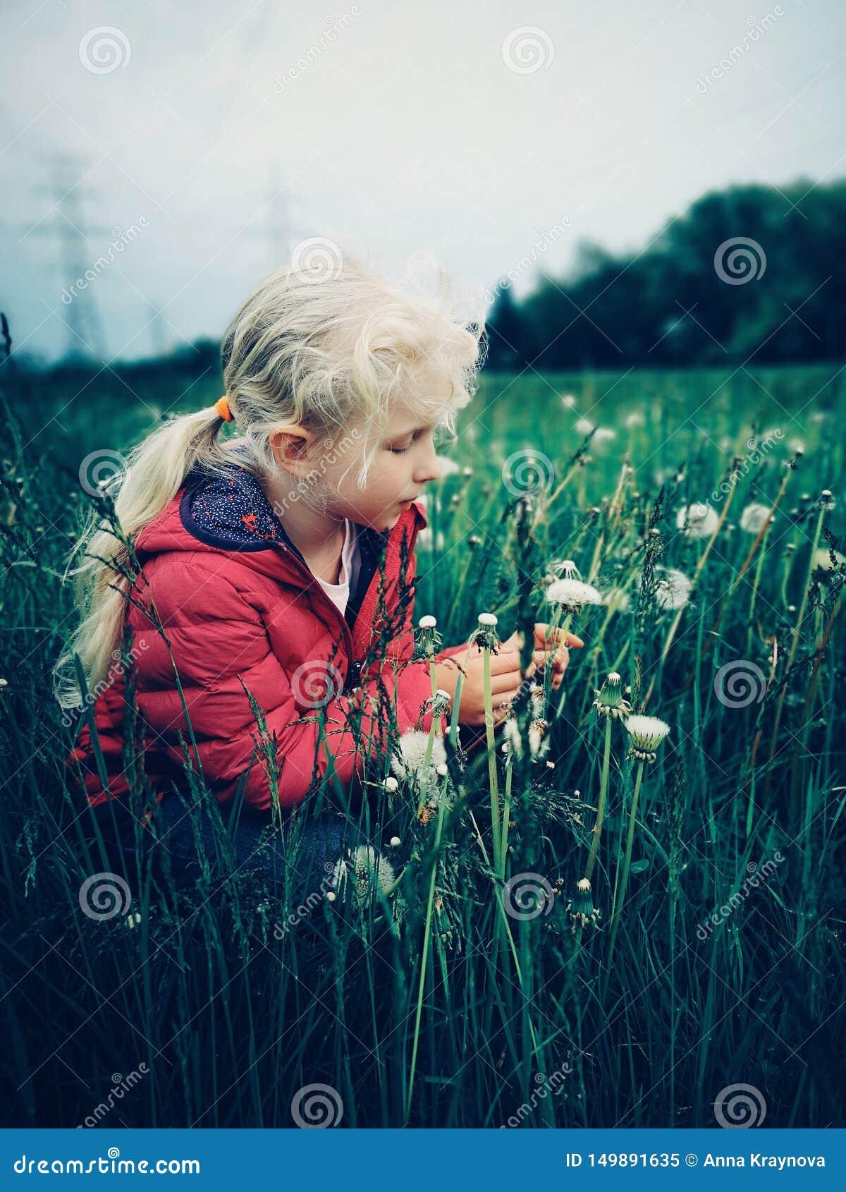 Fille caucasienne marchant parmi les pissenlits et l herbe sur le pré à la soirée
