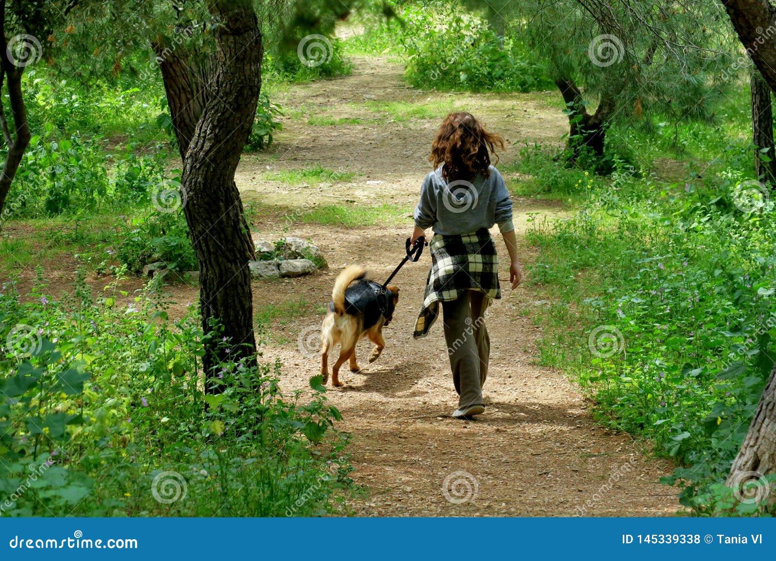 Fille dans les promenades de for?t avec son chien aim?