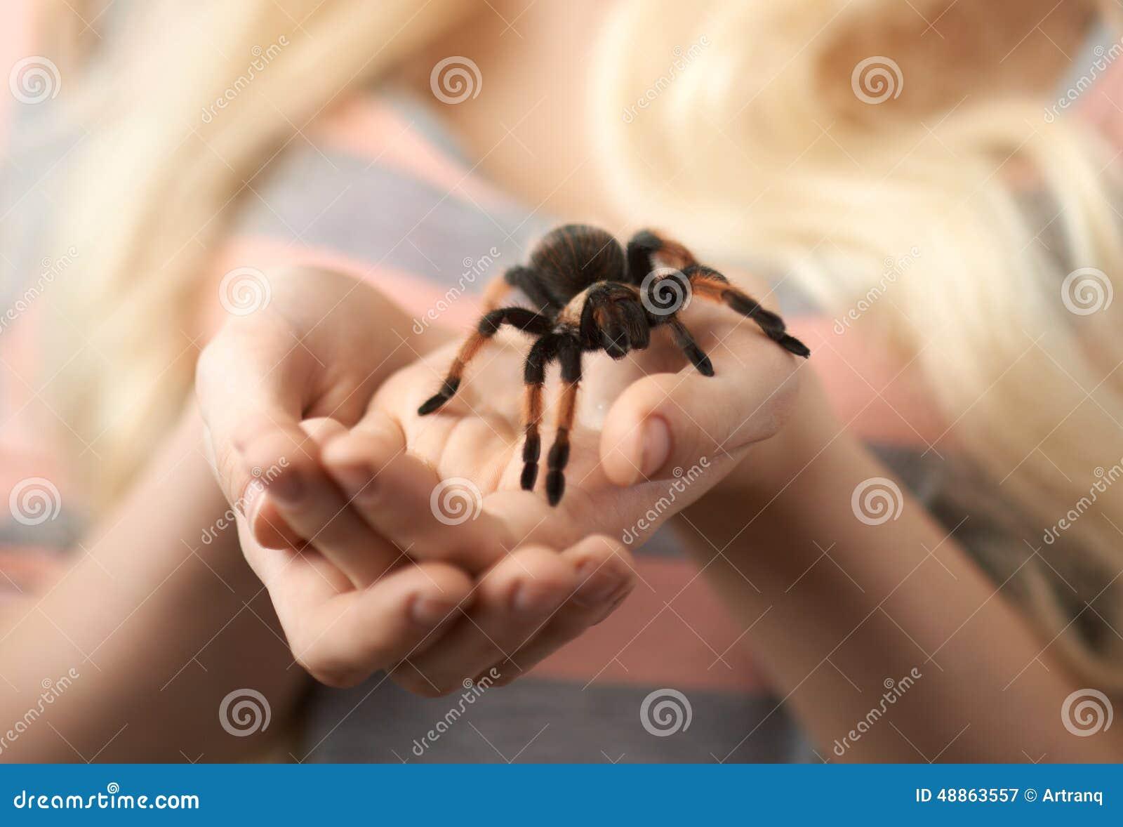 Fille tenant une grande araignée sur des mains