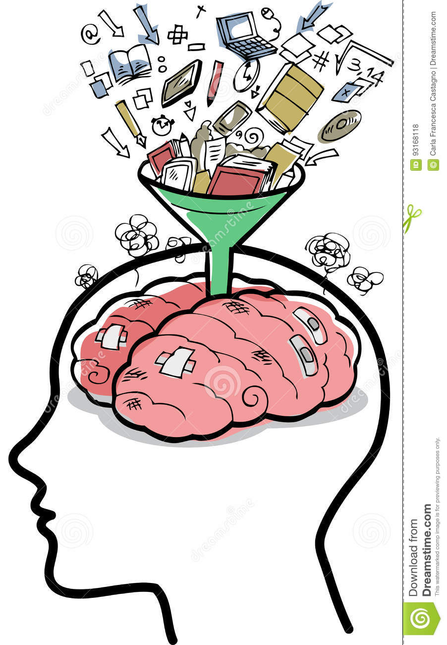 Filling A Brain With Funnel Vector Stock Vector - Illustration of ...