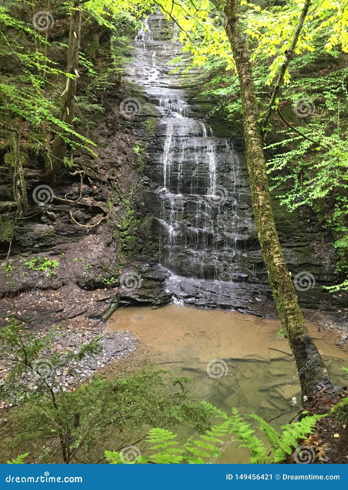 Fillmore Glen State Park Waterfall