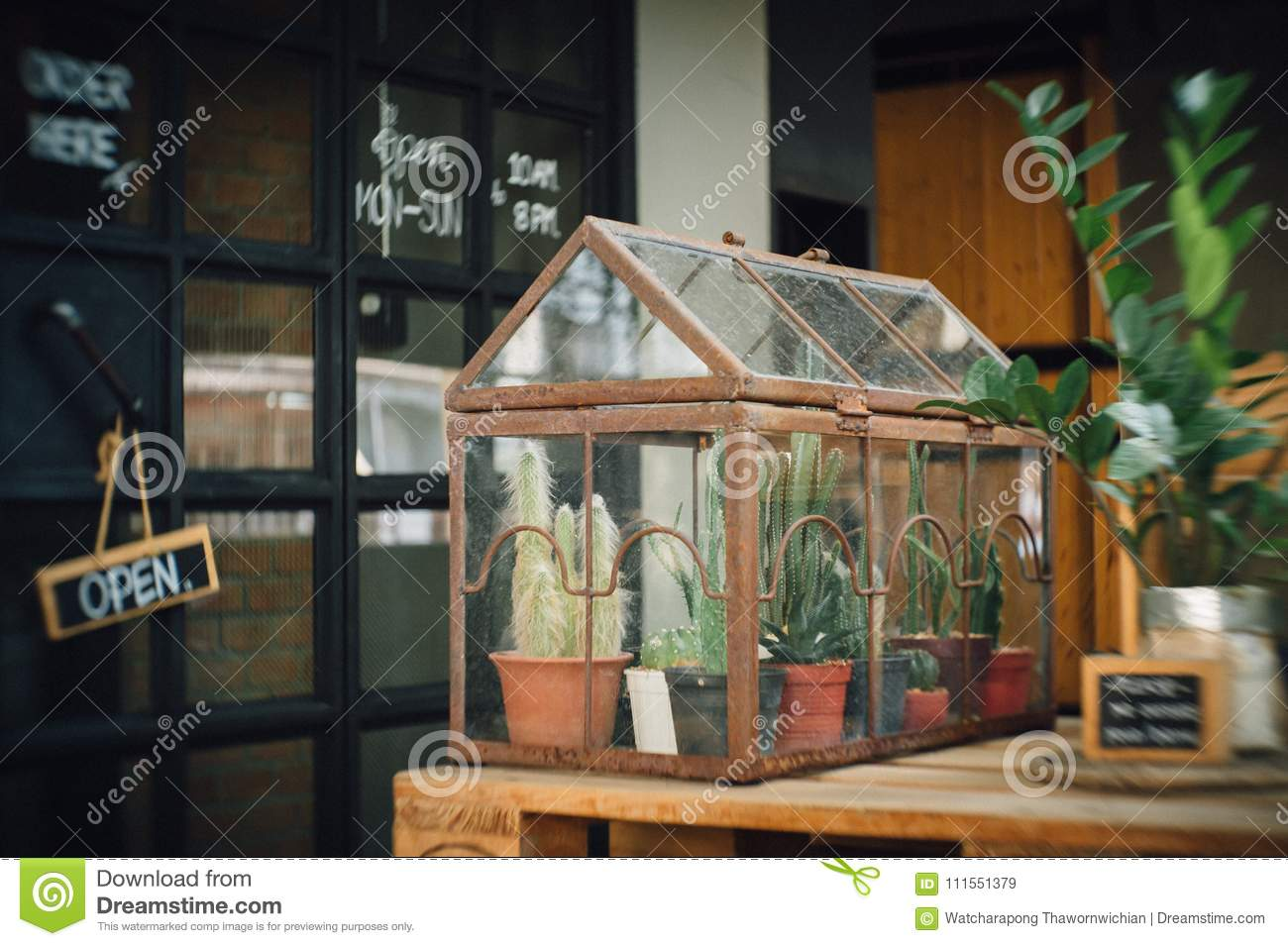 Cactus Terrarium Planting In Little Glass House Stock Image Image
