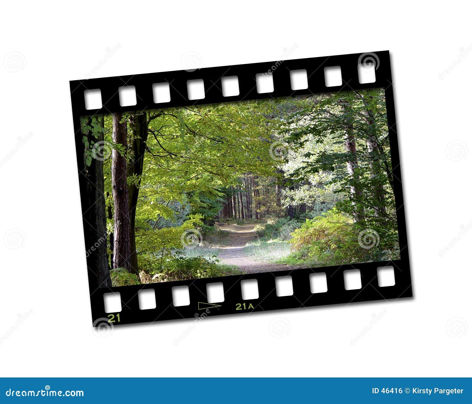 Filmstreifenfoto