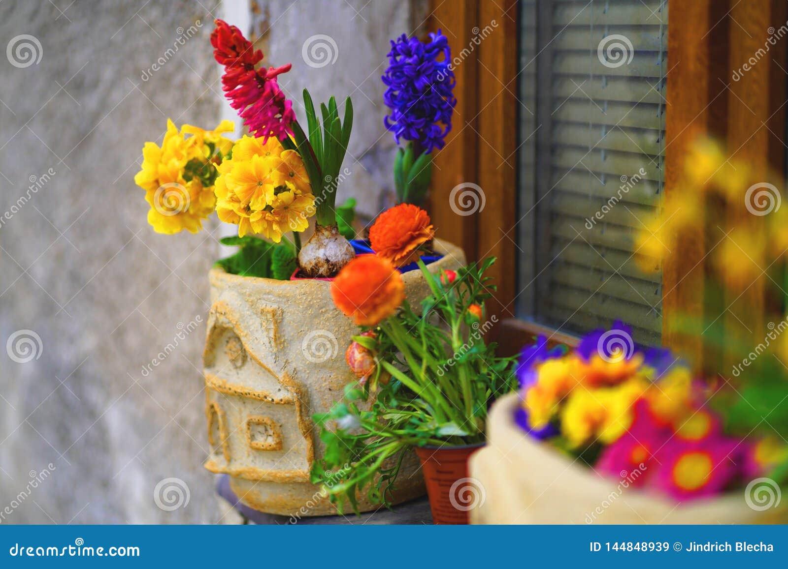 Filon-couche décoré de fenêtre avec des fleurs de ressort dans des pots