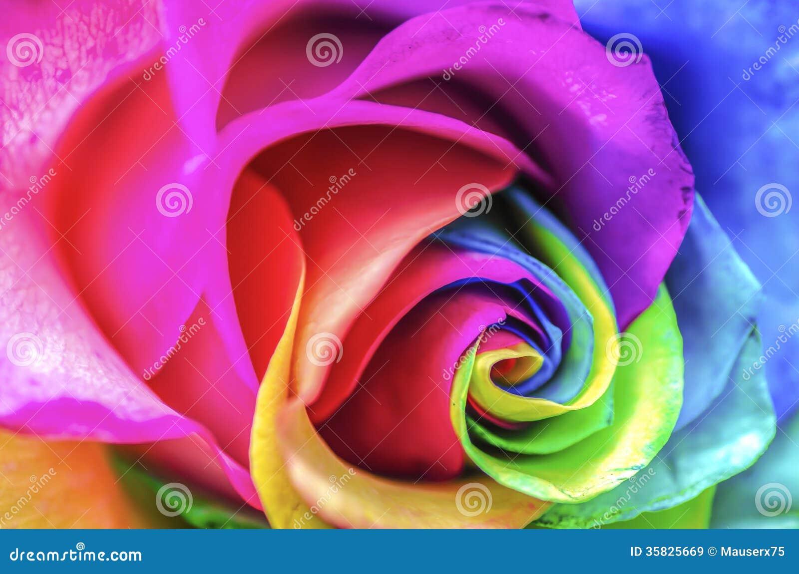 Fim da flor do arco-íris acima