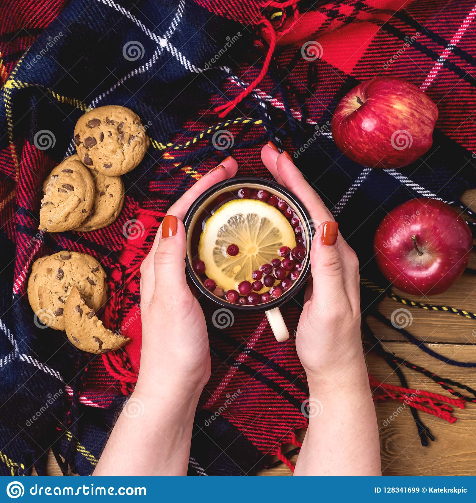 Fimale händer rymmer koppen av begreppet för äpplen för varma kakor för bärcitronte det röda av Autumn Breakfast Woolen Blamket W