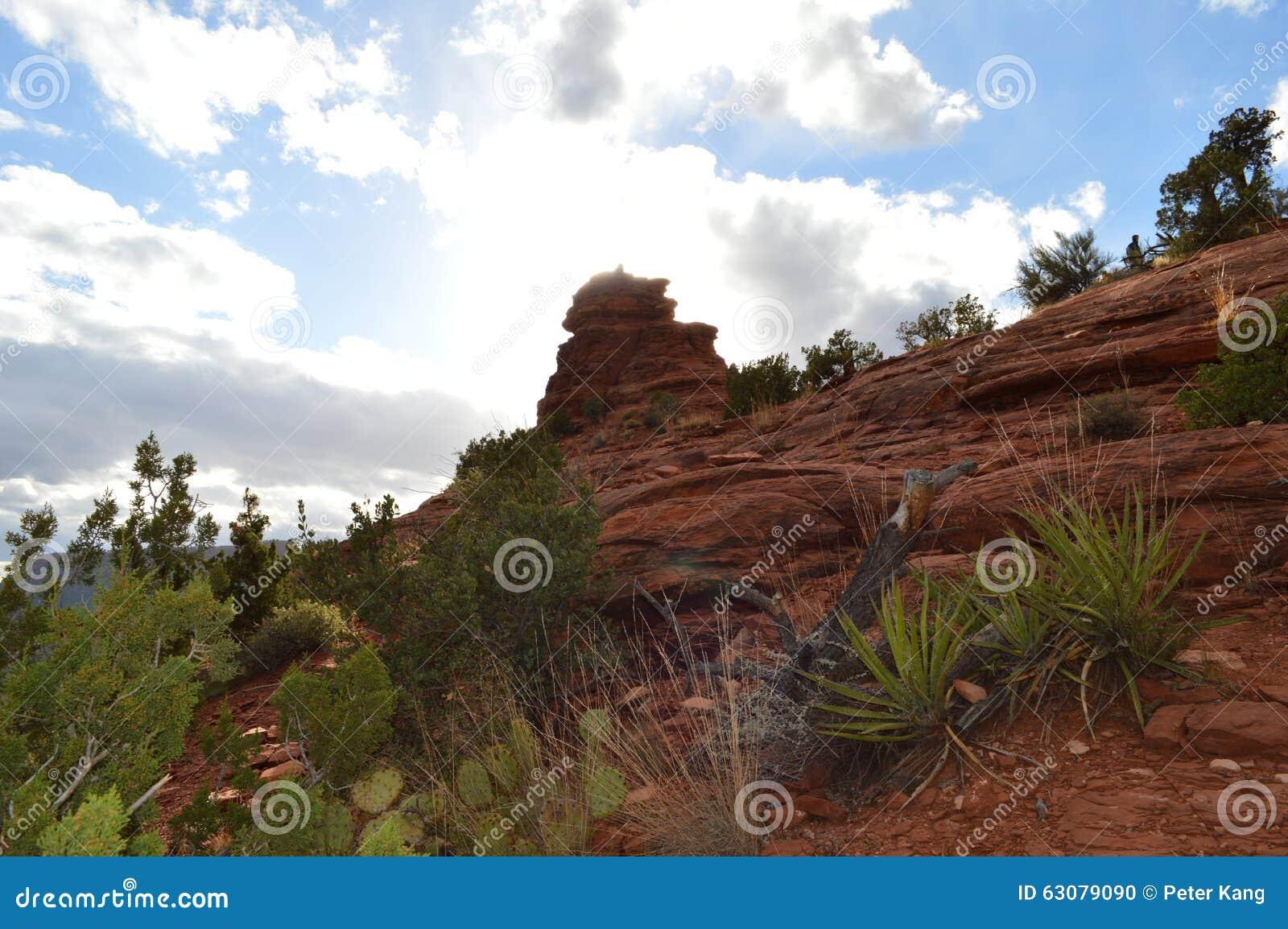 Download Fin De L'après-midi De Montagne Spectaculaire De Sedona Photo stock - Image du arbres, scène: 63079090