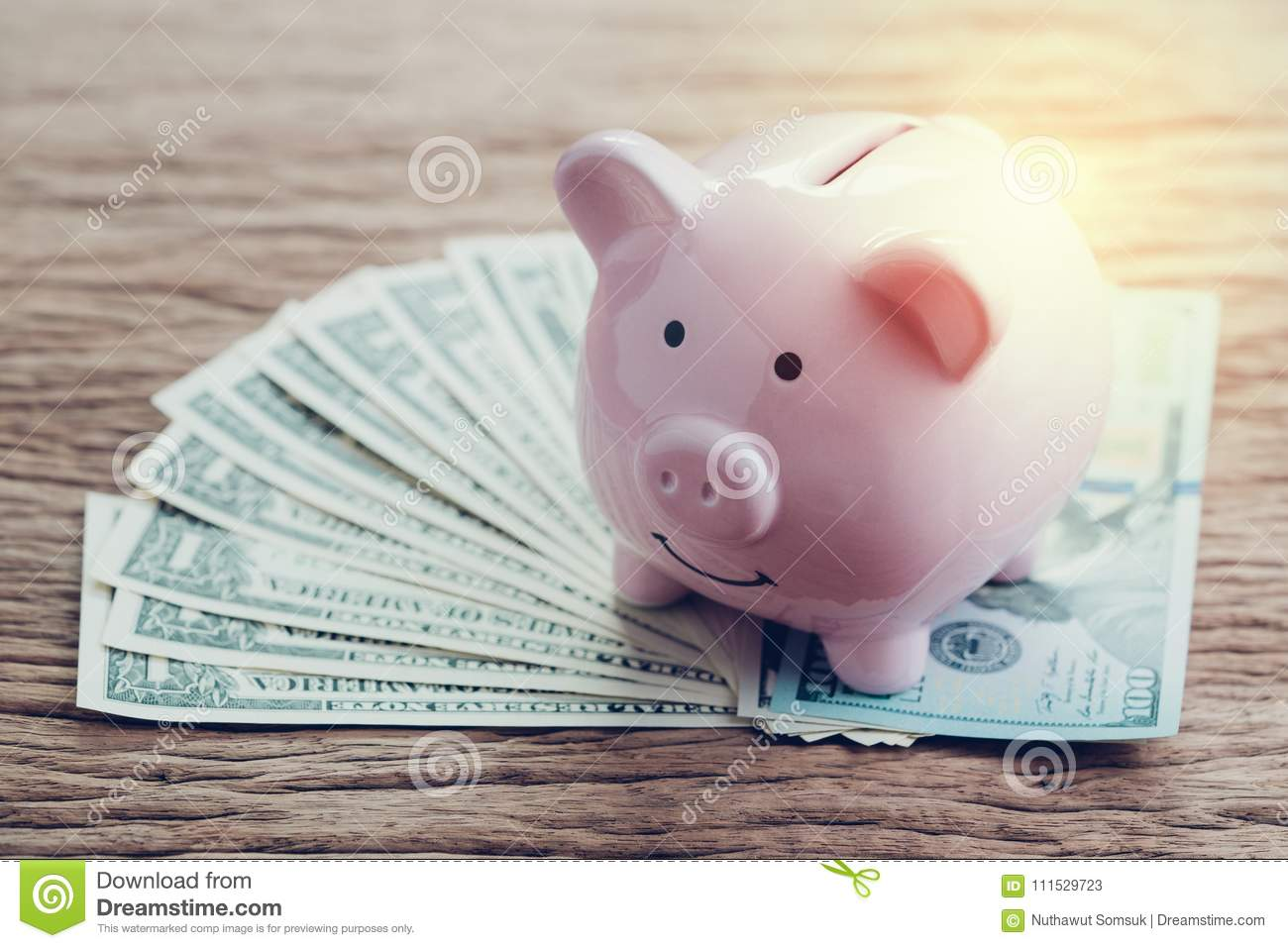 Finance, banking, saving money account, pink piggy bank on pile