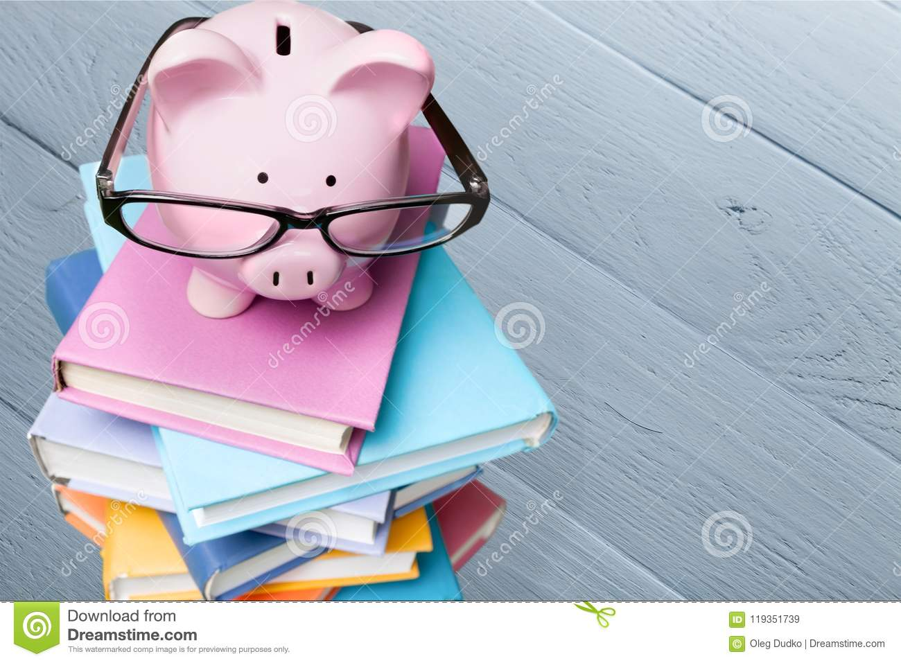 9892c6aad557 Finance piggy bank education book home finances savings learning