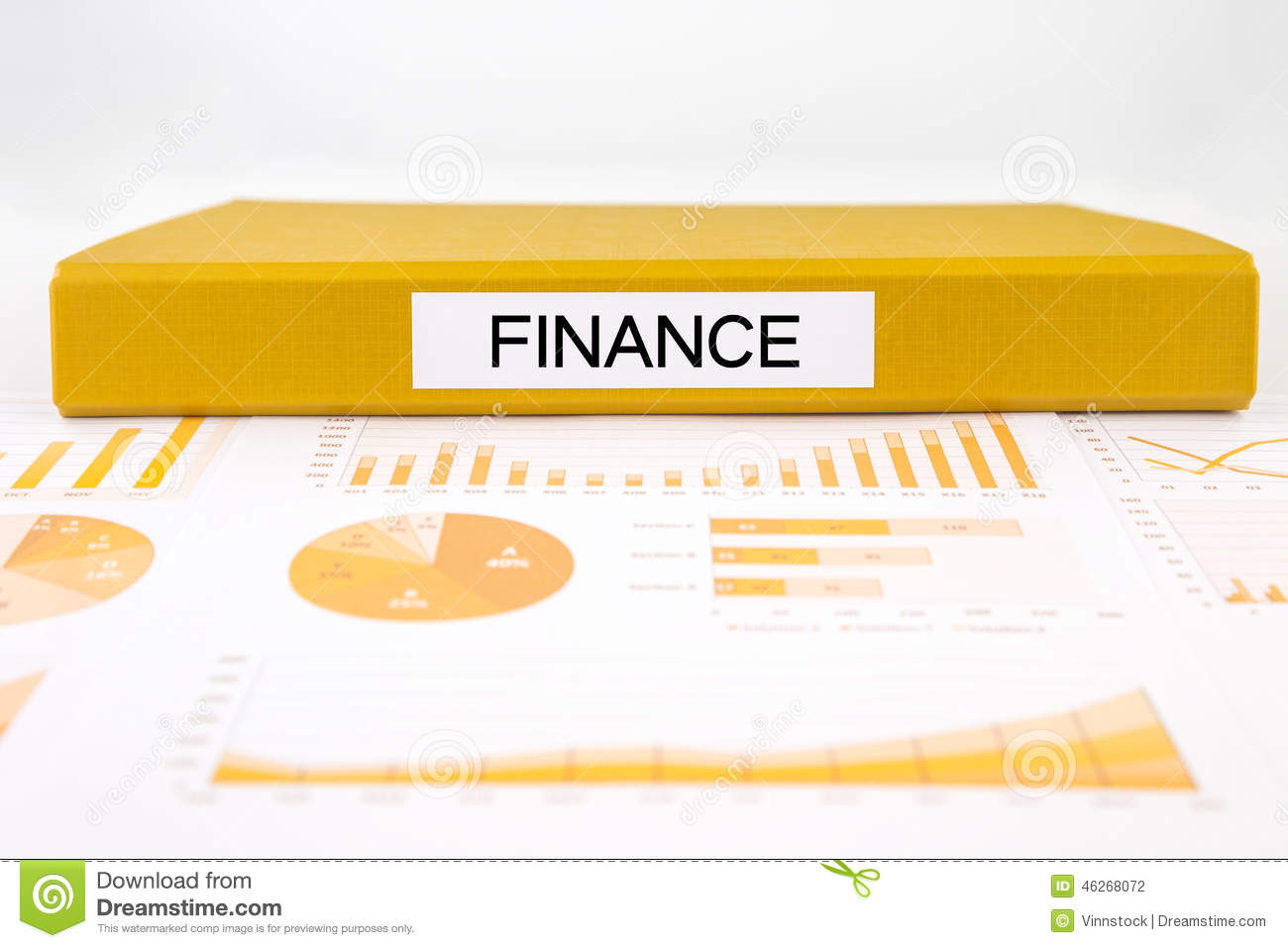 Financial documents, graphs, accounting and audit report for bud