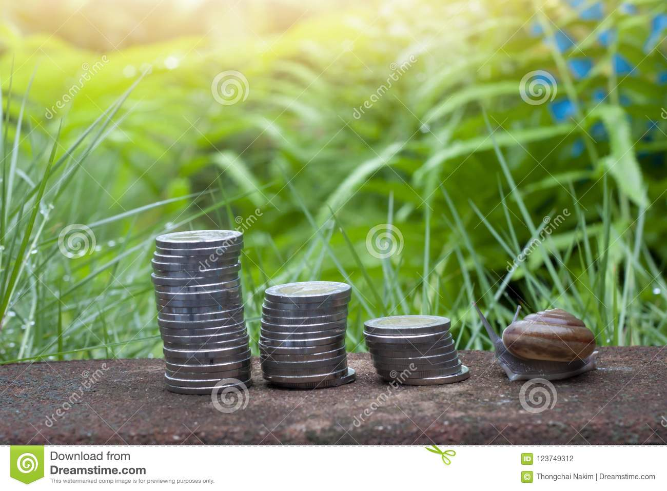 Financial of money and snail.