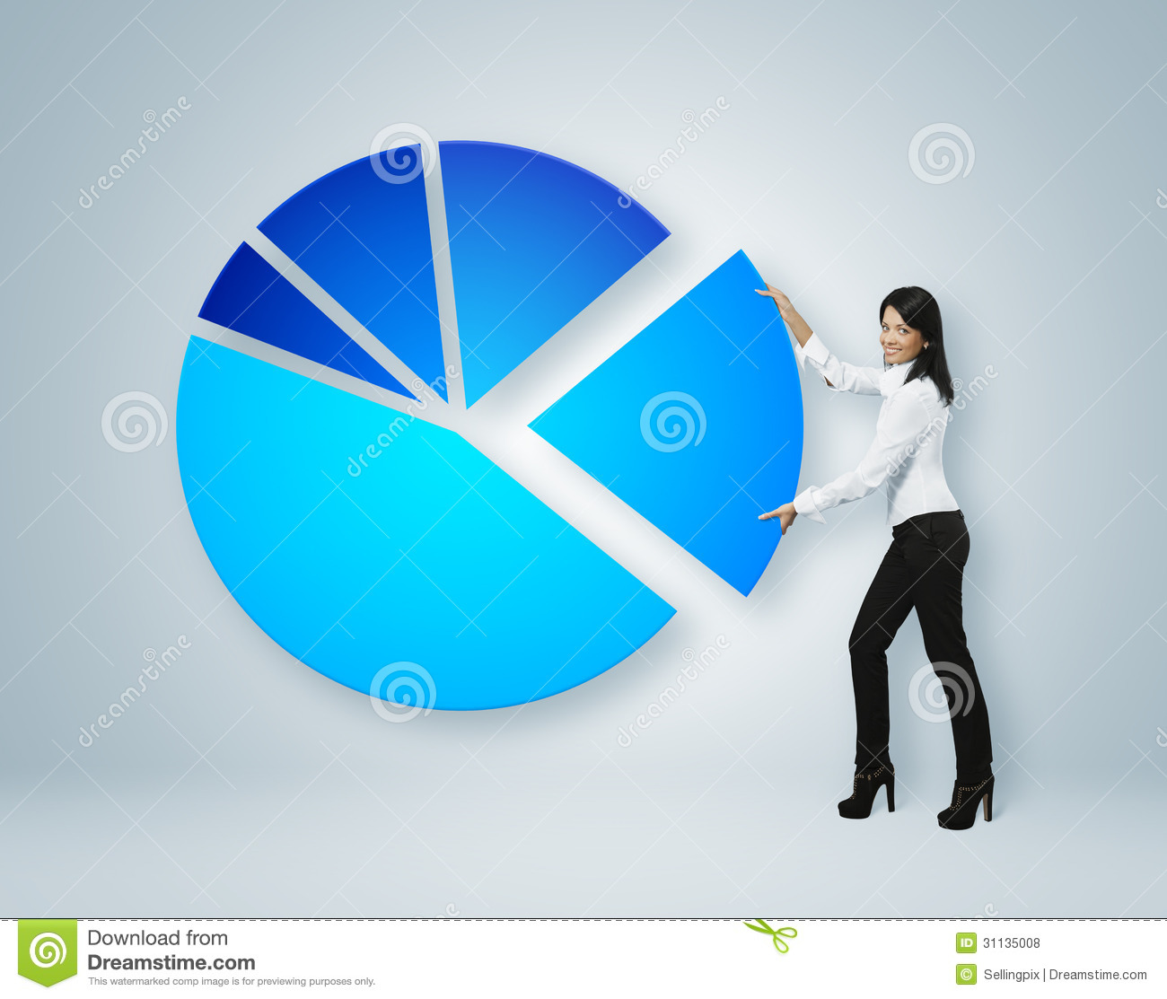 ... Put Sector Of Pie Chart. Royalty Free Stock Photos - Image: 31135008