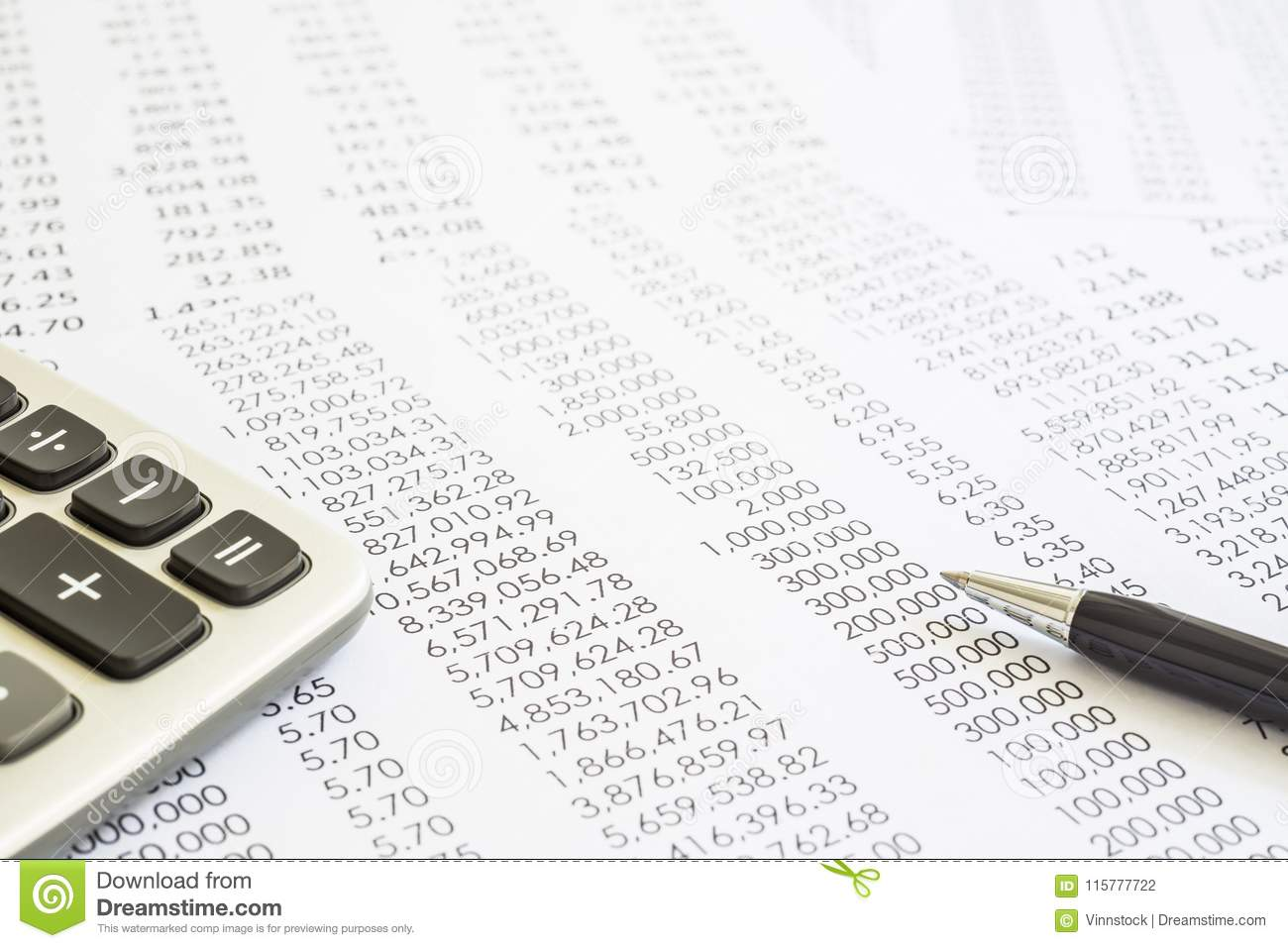 Audit and accounting reports of financial statements.