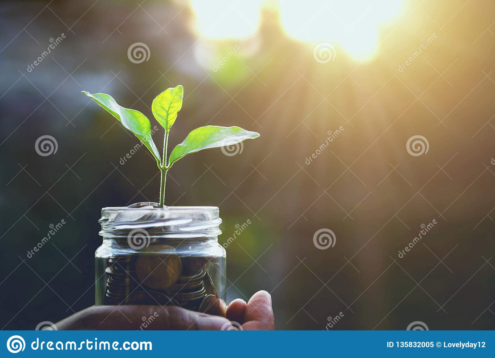 Finanzas del concepto y salida del sol de ahorro del dinero que considera