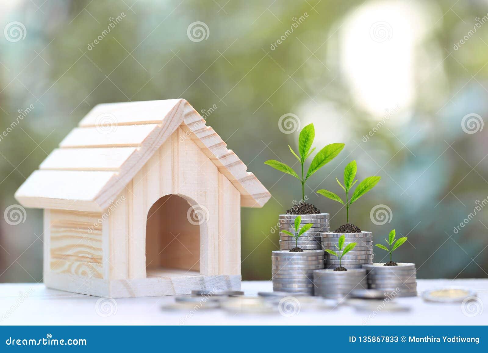 Finanzas, planta que crece en la pila de dinero de las monedas y la casa modelo en el fondo verde natural, tipos de interés y dep