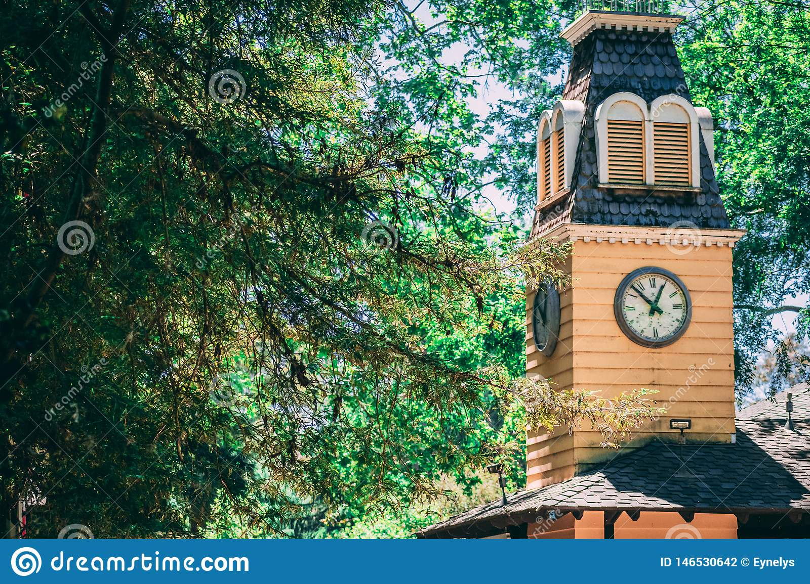 Forest Secrets of the Clock Tower