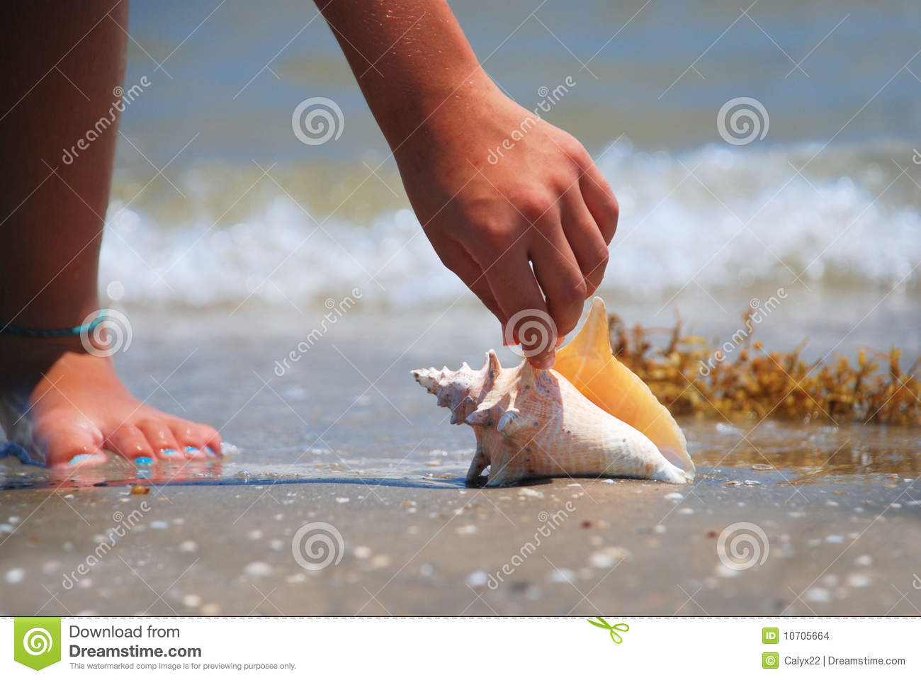 Finding Treasure Stock Images Image 10705664