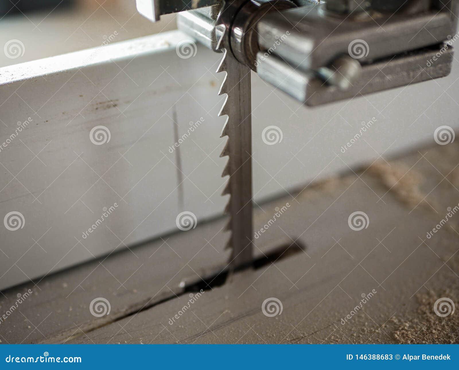 Fine della lama della sega a nastro sul colpo, sulla polvere di legno e sui chip