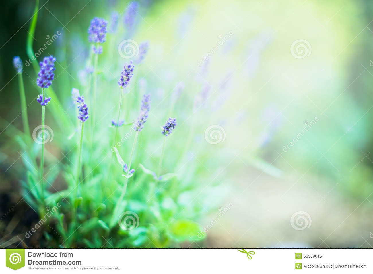 blurred outdoor backgrounds. Simple Outdoor RoyaltyFree Stock Photo Inside Blurred Outdoor Backgrounds S