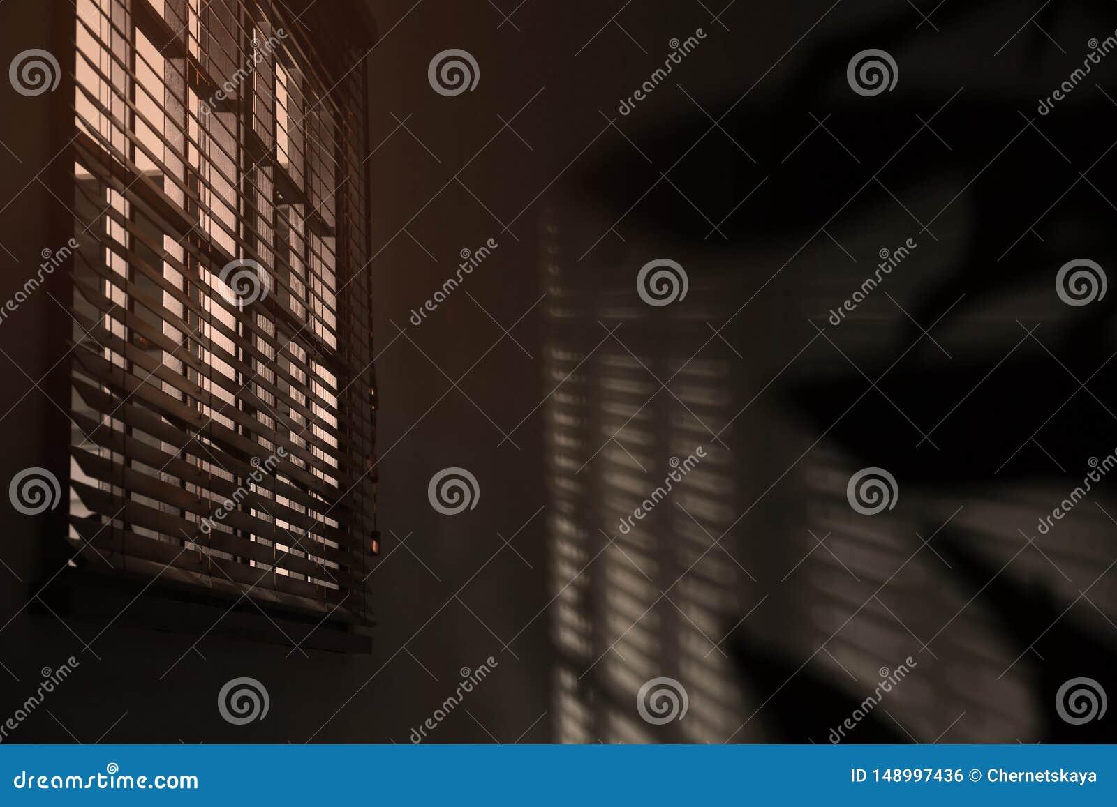 Finestra con i ciechi orizzontali nella sala