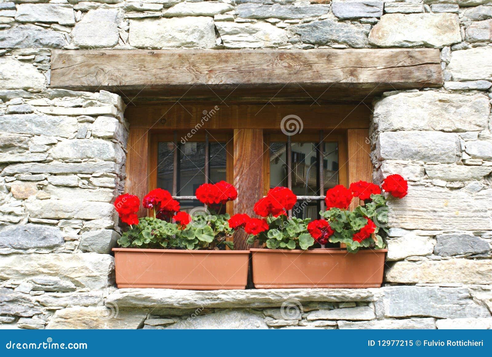 Finestra con i fiori immagine stock immagine di geranio for Finestra con fiori disegno