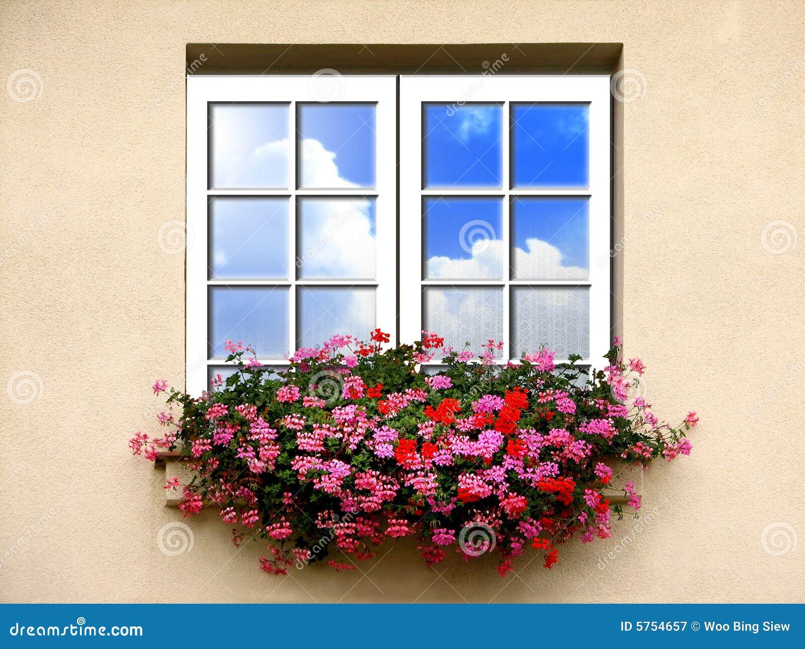 Finestra con i fiori immagine stock immagine di bianco for Finestra con fiori disegno