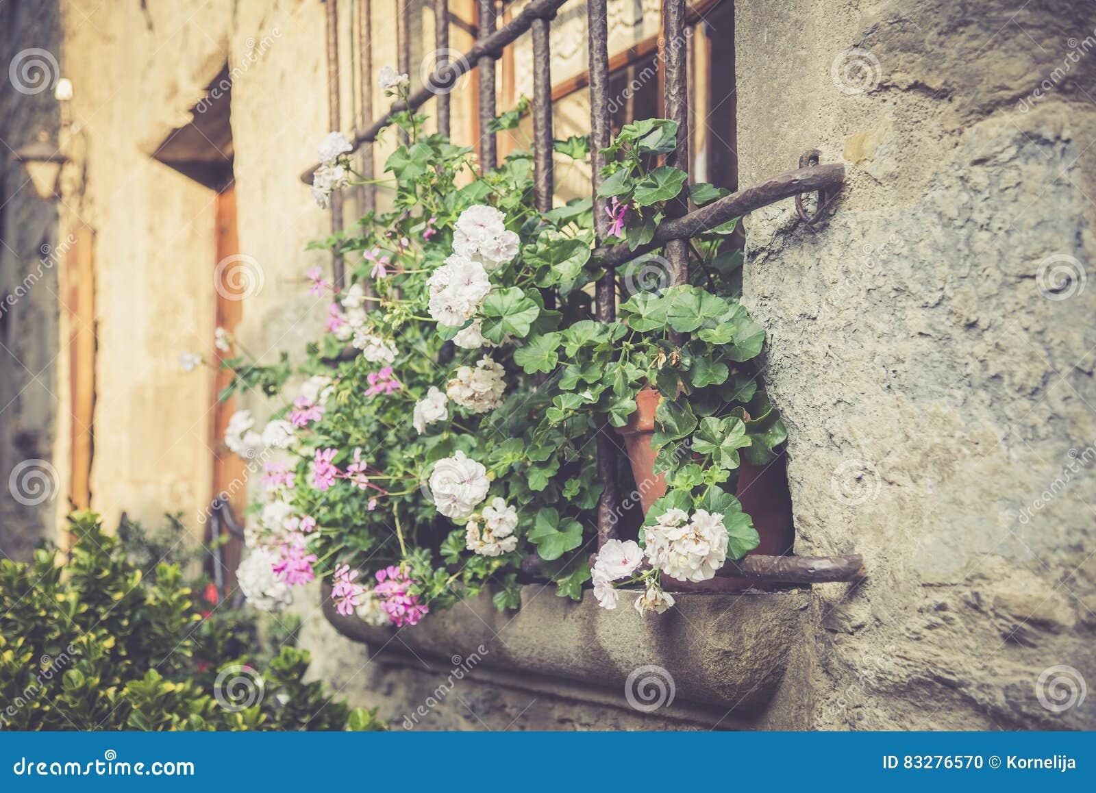 Finestra con i grandi fiori fotografia stock immagine di for Finestra con fiori disegno
