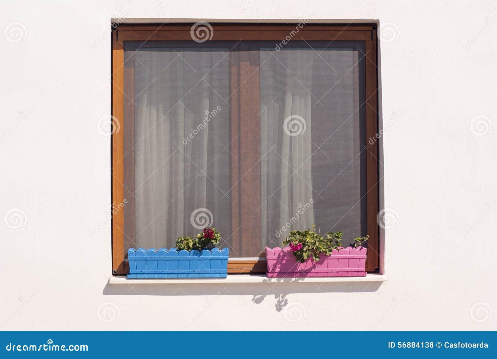 Finestra e piante