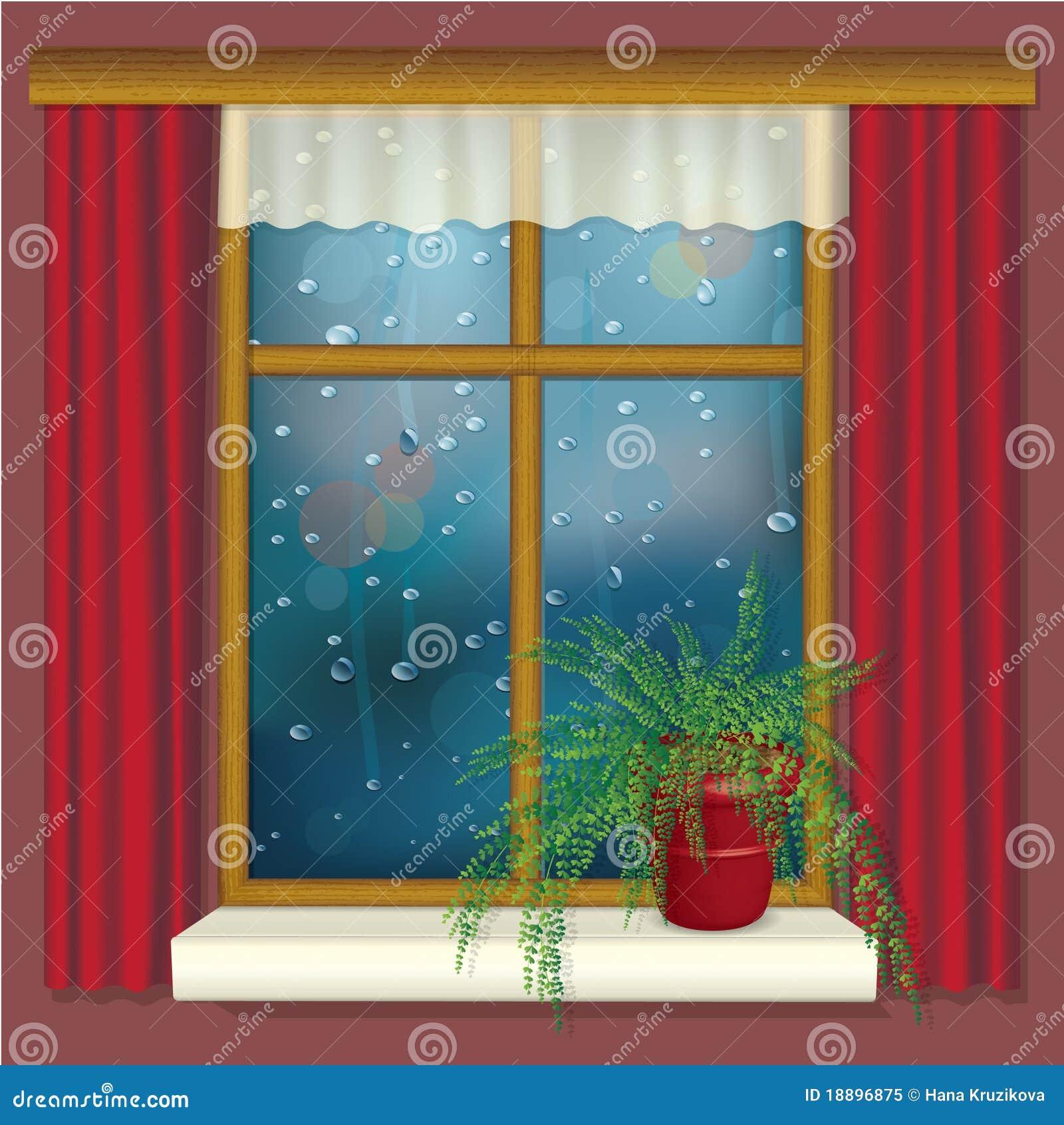 Finestra piovosa con le tende ed il fiore