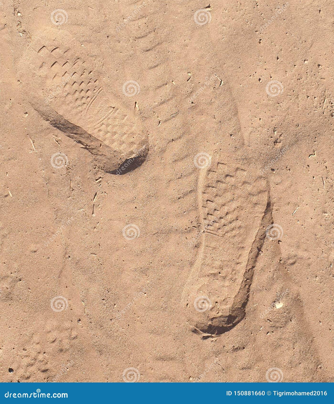 Fingeravtryck i sanden
