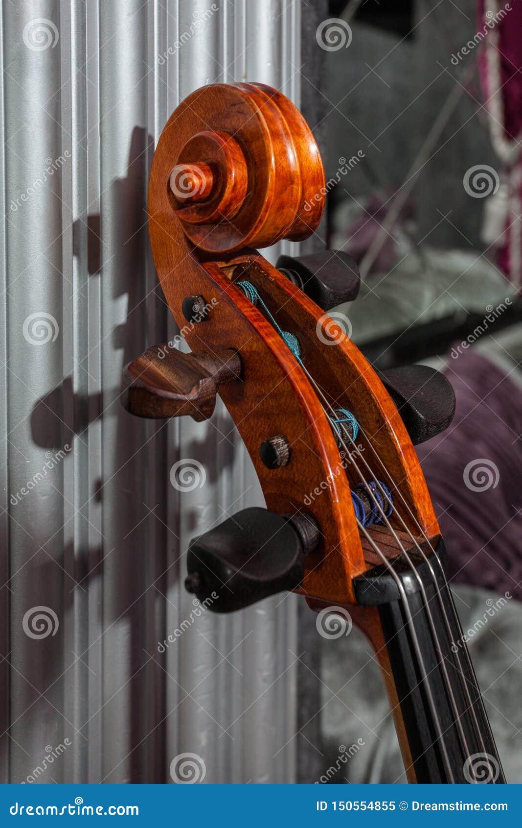 Fingerboard av violoncellen i grå barock inre