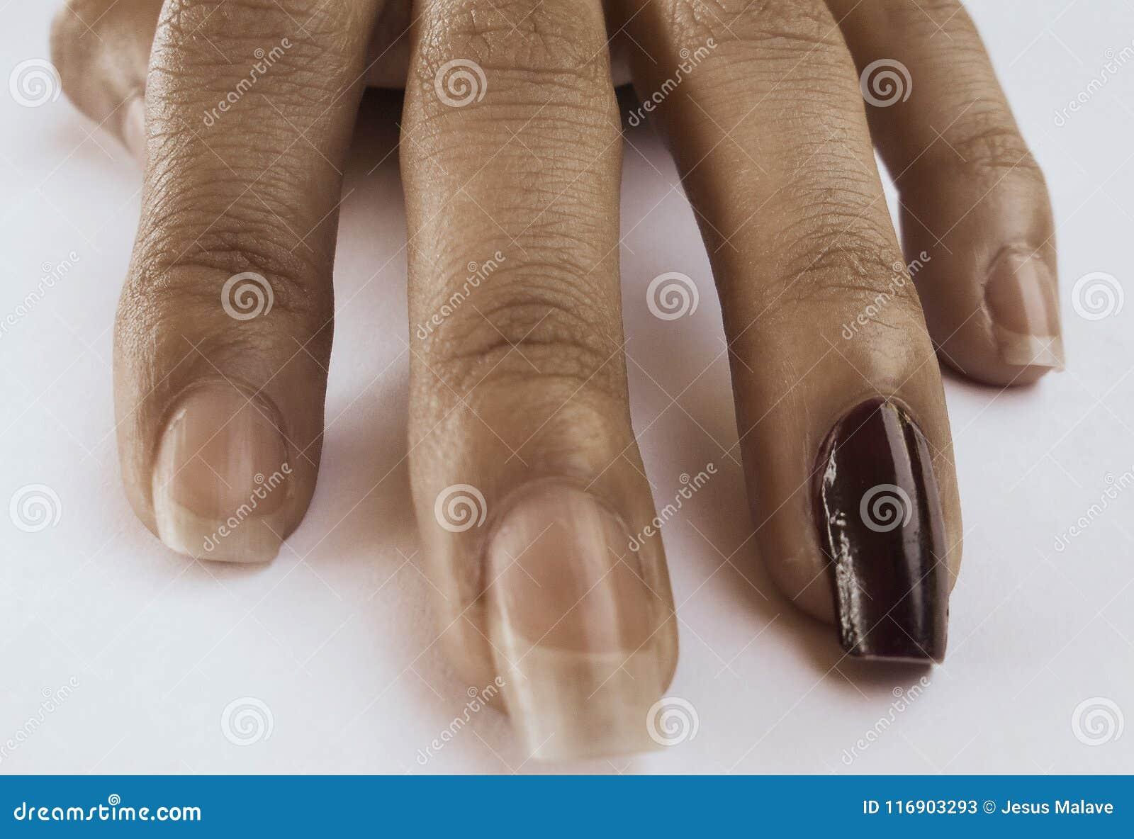 Fingeres de una mano perfectamente natural