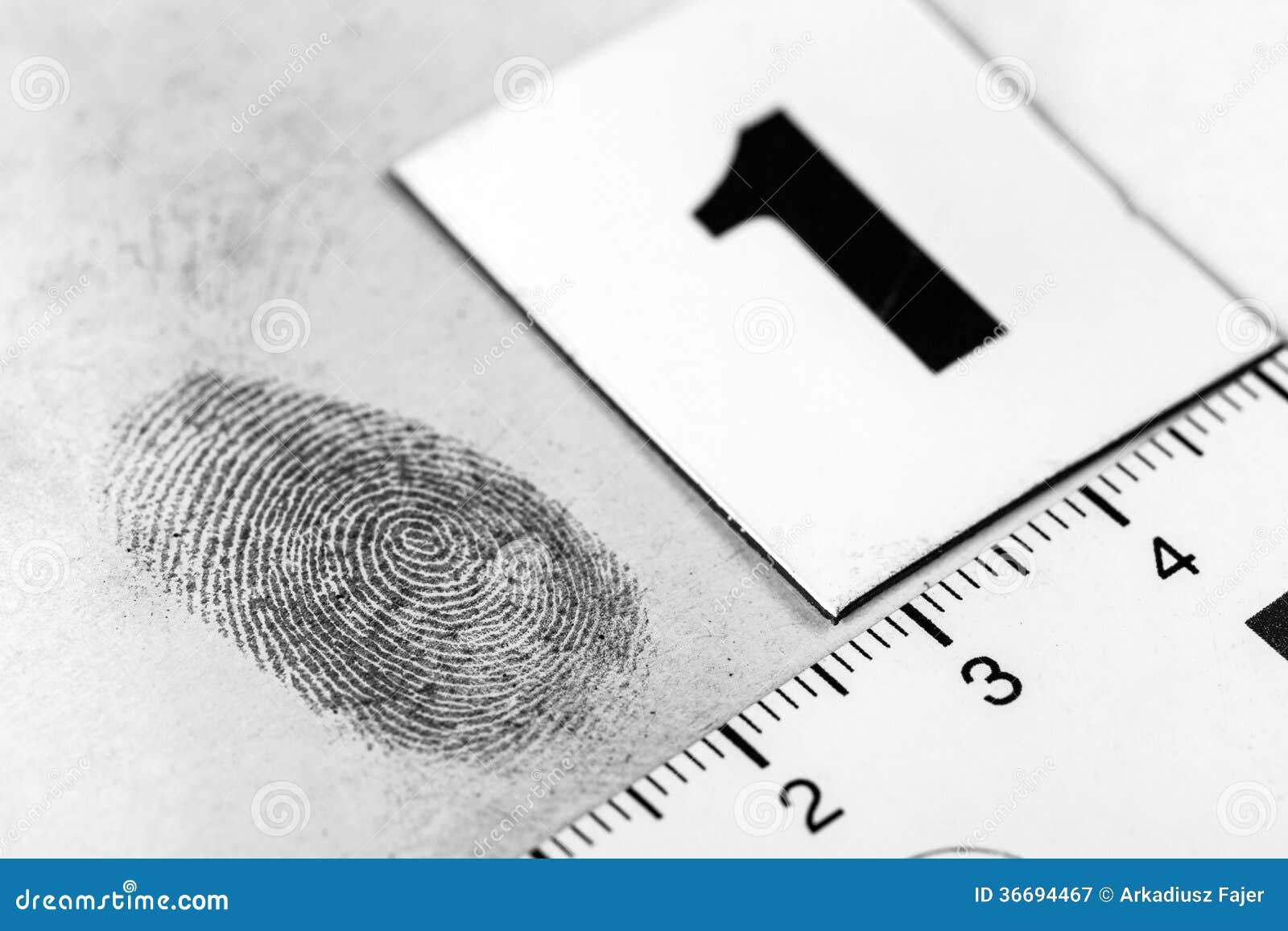 Fingerprint identificationthesis